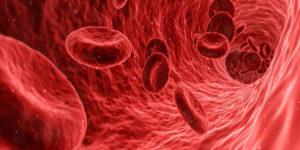 Dia Mundial do Doador de Sangue: Brasil está acima da média de doação